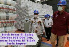 Stock Beras di Bulog Tembus 923.000 Ton, Buwas Percaya RI Tidak Perlu Import (1)